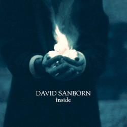 David Sanborn - Brother Ray